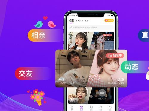 相亲交友app源码,云豹婚恋系统源码,婚恋相亲系统开发