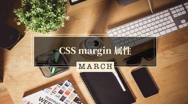 CSS margin 属性