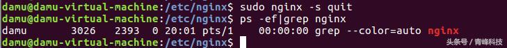 Nginx基础,反向代理商,负载均衡配置,仅此一篇文章就够了