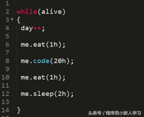 一段 While �f明了程序�T的每一天