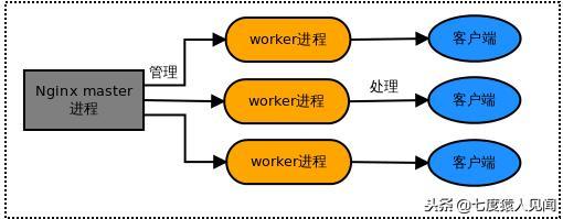 了解 Nginx 源码之一配置文件