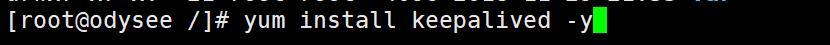 Nginx系列篇三:linux中Nginx+keepalived做一个高可用的主从配置